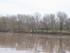 Potomac at Whites Ferry During High Water